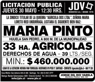 jdv-maria-pinto